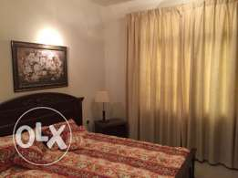 Apartment 1 Bedroom Fully Furnished in BN Mahmud 219