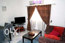 nice fully furnished 2 bhk apartment in old airport