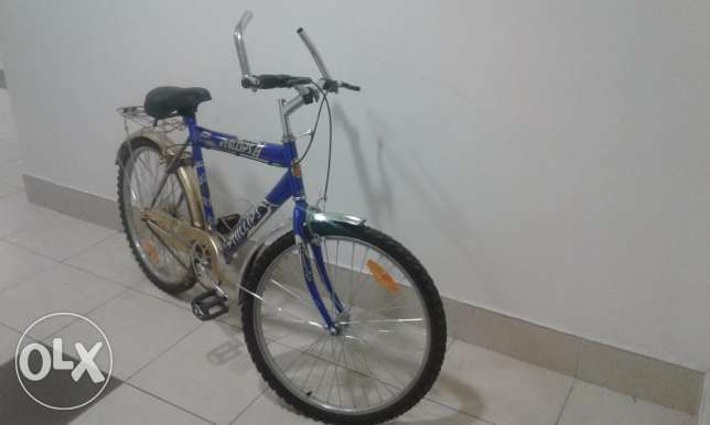 Large blue bike 13+