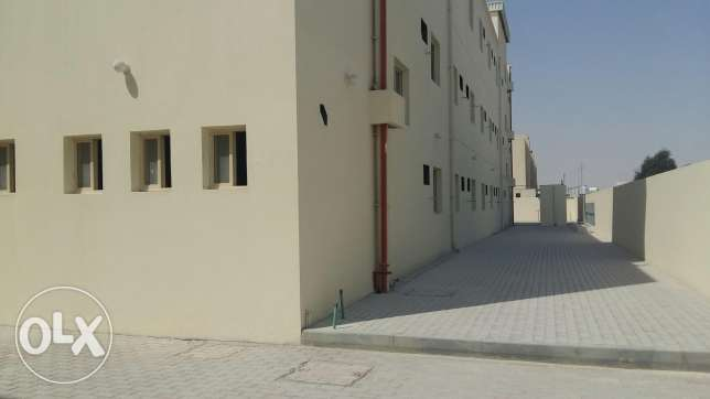 87 Rooms - Brand new Labor camp for rent المدينة الصناعية -  1