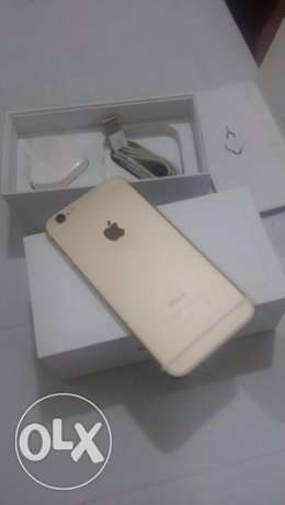I phone 6 gold 16GB used no scratches w/box & charger for Only 1500QR الوكرة -  3