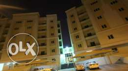 Luxurious full furnished 2BHK apartment available in Mansoura