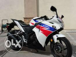 2014 Honda CBR250R for sale