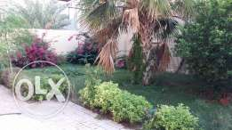 Beuatiful Standalone S/F villa 4 B/R+MAID NewSalata Beautiful Landscap