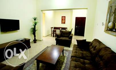 3BHK Fully Furnished Apartment in Old Airport