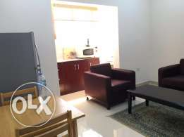 very nice premium type one bedroom apartment in Dafna