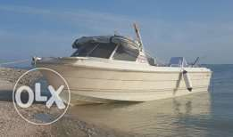 21 Foot Smartliner Boat with 115 Yamaha engine