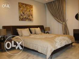 FF 2/3 BR apartment in AL Nasr, Rent For 1 or 2 MONTHS,Gym,Pool