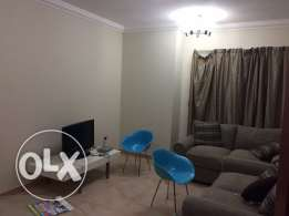 Fully-Furnished/2- bhk flat in al Sadd