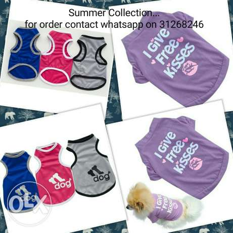 Summer Collection for pets
