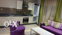 1B/R fully furnished apartment