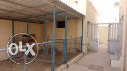 6 BHK villa in al khor + outhouse