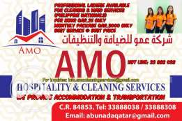Lady cleaners available to meet your cleaning and maid services