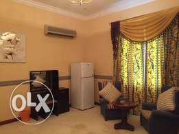 luxury type big studio apartment in Dafna