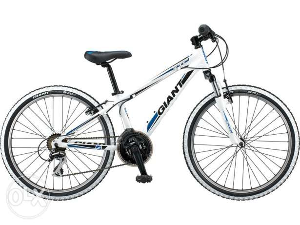 "bicycle Gaint 26"" like new"