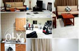 include w & e ..nice 2 bhk fully furnished apartment in old salata