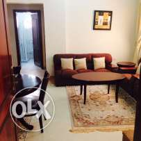 2 bhk fully furnished flat in old airport for family