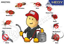 Best Pest Controllers in Qatar