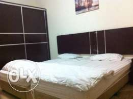 FF Master Bed Room Attached Bath for Executive Bachelor Ezdan Wakrah